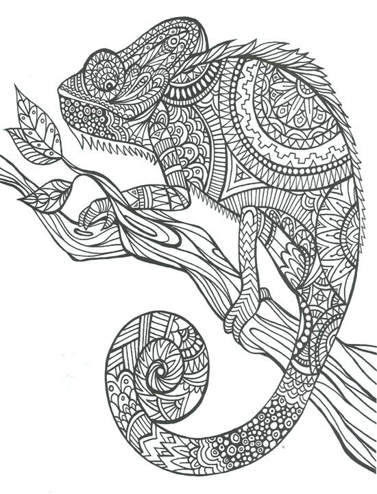 15 Ilustrações para Imprimir e Colorir Já  (1)
